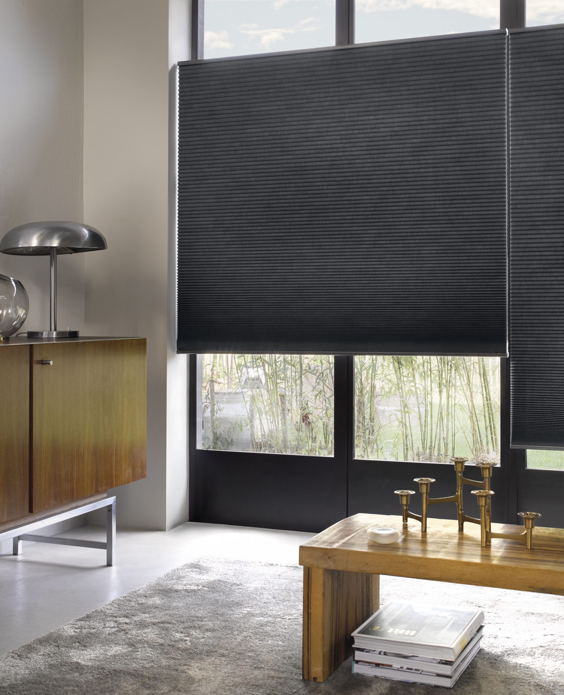 Luxaflex Duette Shades. Door de top down bottom up functie behoud u uw privacy